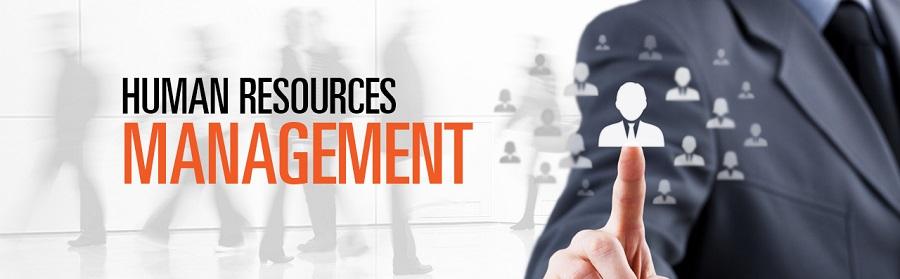 menadzment ljudskih resursa