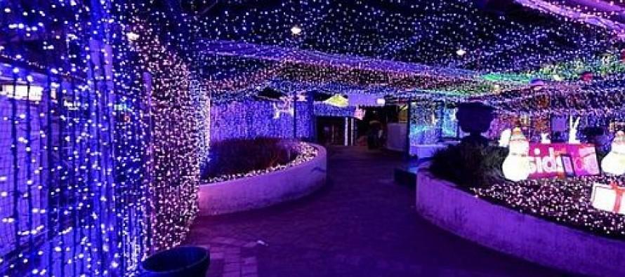 Kanbera: Grad sa božićnim ukrasima za Ginisa