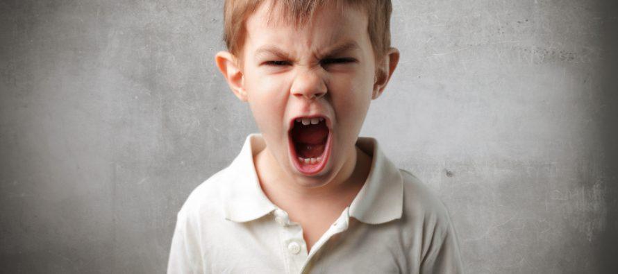 Razdražljivo dete – budući nasilnik