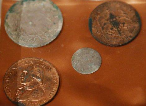 novčići