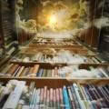 knjige-polica