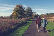 Šta određuje životni vek?