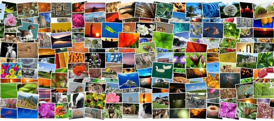 Kako pronaći izvor slike na internetu