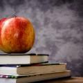 knjiga-jabuka