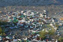 Postoji bakterija koja razlaže plastiku!