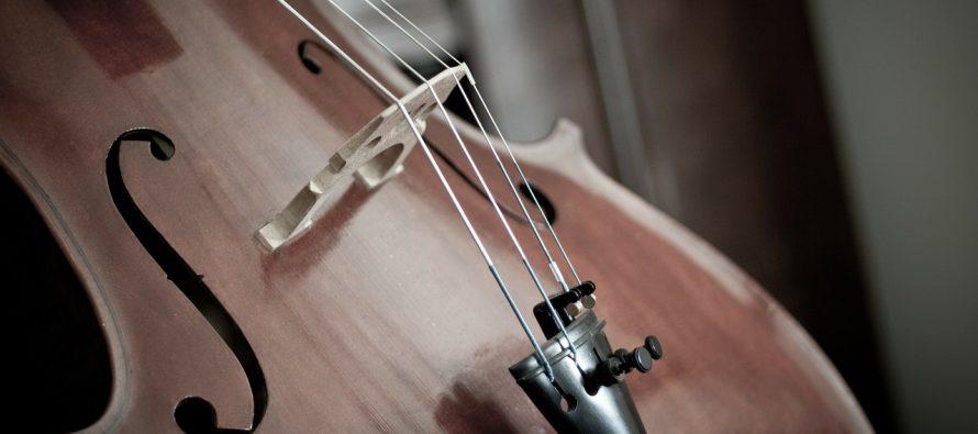 Novi Sad: Koncerti studenata violončela