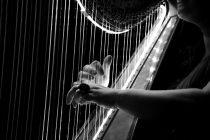 Beograd: 15. Međunarodni festival harfe