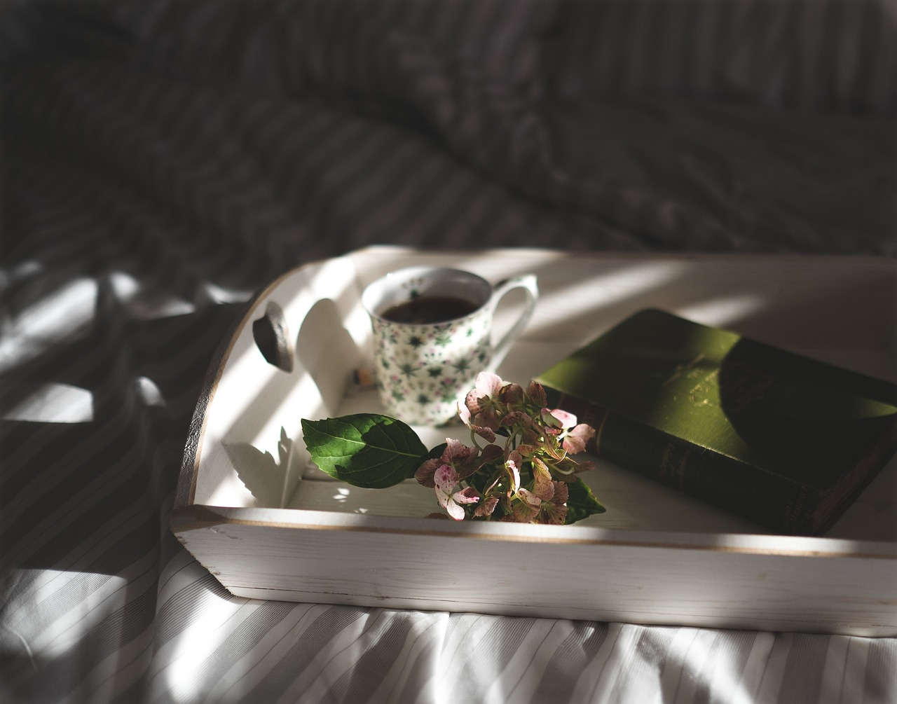 kafa krevet knjiga