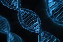 Kada je otpočela era DNK testiranja?
