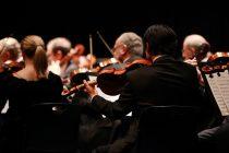 Delima klasične muzike protiv različitih tegoba