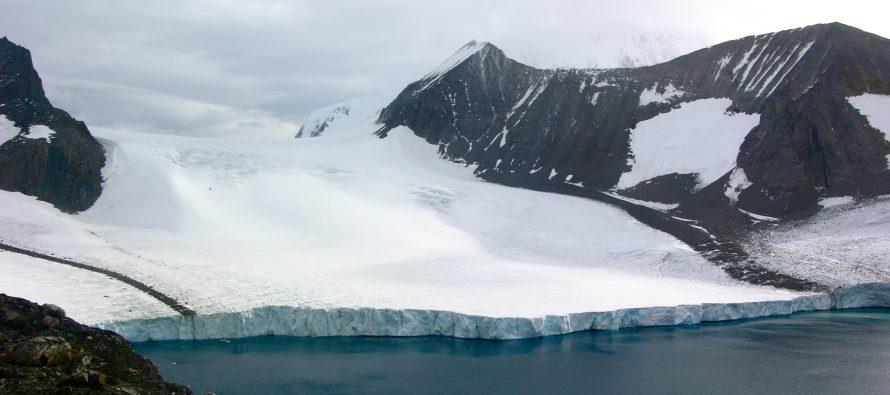 Visoke temperature i zelenilo na Antarktiku