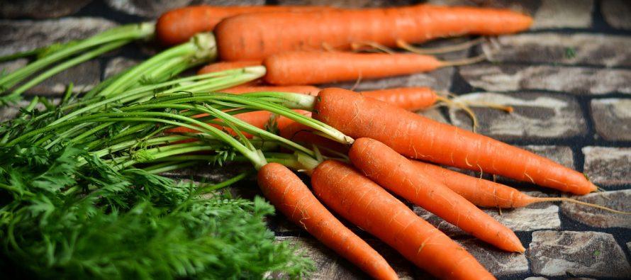 Koje namirnice treba da konzumiraju osobe sa smanjenom funkcijom štitne žlezde?