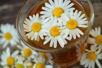 Idealan dodatak dijeti: Ove biljke pomažu u mršavljenju