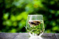 Zašto je zeleni čaj preporučljiv?