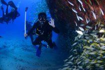 Manje poznate činjenice o okeanima