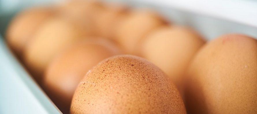 Ovu grešku pri čuvanju jaja pravimo svi!