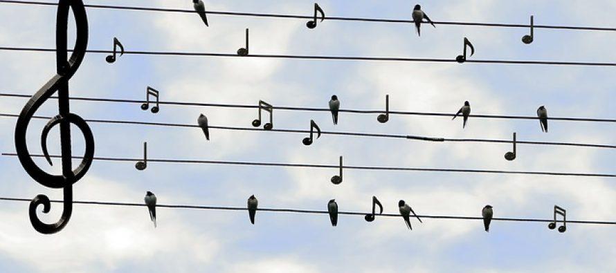 Najinspirativniji stihovi poznatih pesama