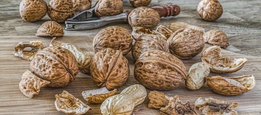 Kako razlikovati alegriju od intolerancije na određene namirnice?