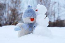 Kako je nastao Sneško Belić?