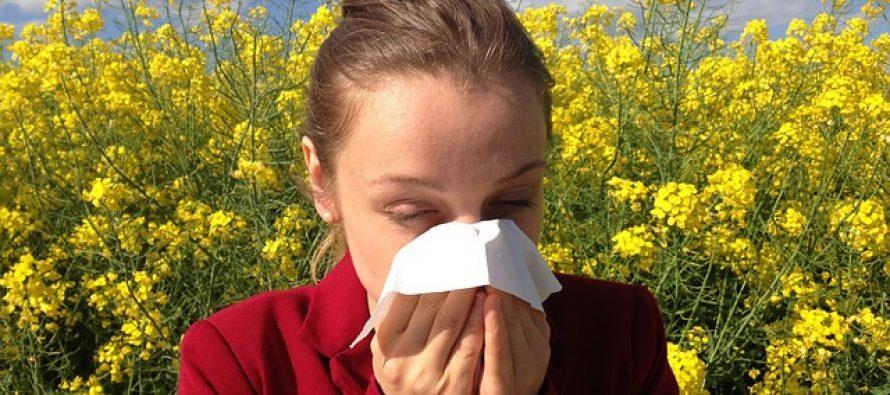 Novi pristup alergijama mogao bi da spreči reakciju pre nego što se desi?