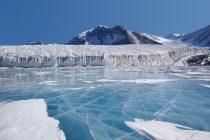 Na Antarktiku otkriven dosad neviđen podvodni svet