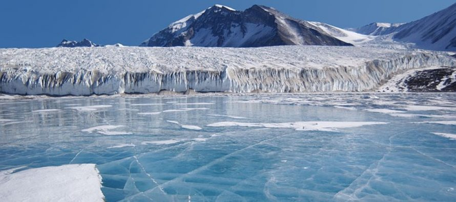 Kako će promene na Arktiku uticati na ostatak planete?