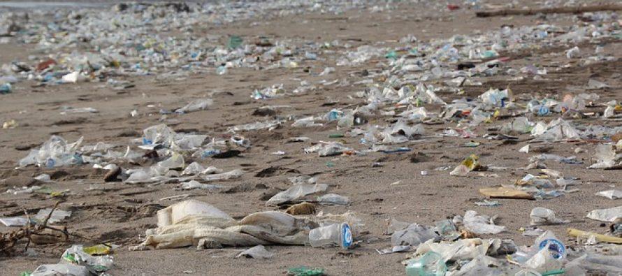 Mikroplastika je svuda?