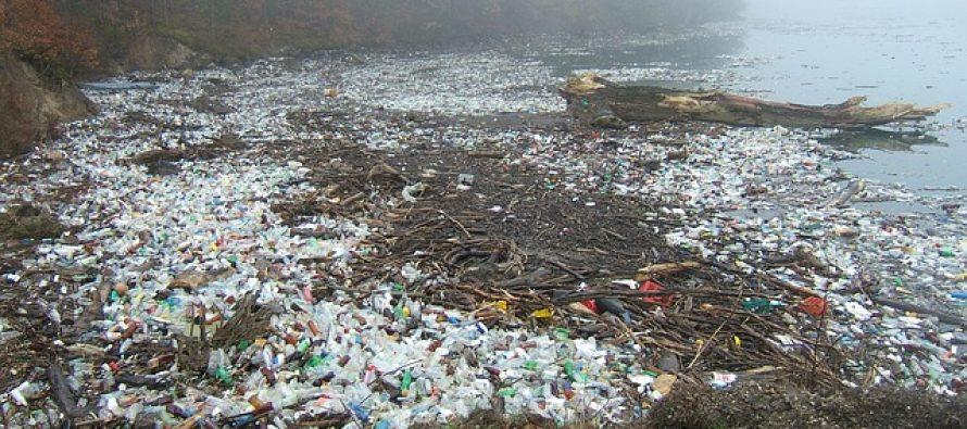 Plastični otpad skuplja se i na najudaljenijim delovima Arktika