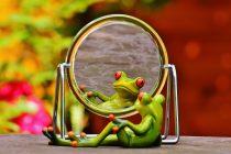 Boja ogledala