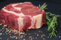 Šta bi se dogodilo sa organizmom ukoliko bismo jeli samo meso?