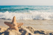 Alarmantno: Okeani se zagrevaju brže nego što smo predivdeli!