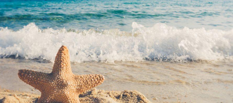 8. jun – Svetski dan okeana