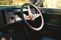 Koliko je vrućini u automobilu potrebno da postane smrtonosna?