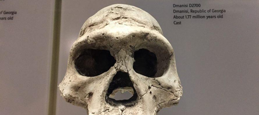 Nova otkrića pobijaju teoriju da je pračovek iz Afrike?