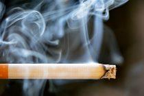 Cigarete sadrže šećer?