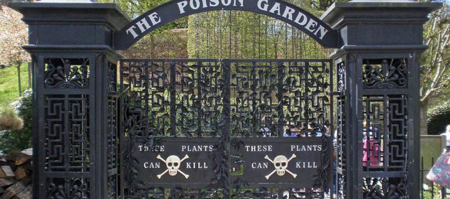 Gde se kriju najopasnije biljke?