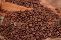 Kako klimatske promene utiču na proizvodnju kafe?