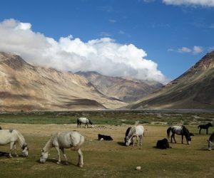 U čemu je tajna dugog životnog veka ljudi sa Himalaja?