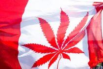 Kanada legalizovala kanabis