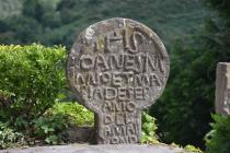 Koji je to najstariji jezik koji se i dalje govori?