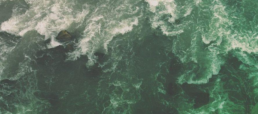 Mikroplastika pronađena i kod životinja na najdubljim mestima u okeanu!