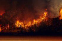 Sateliti uočili čak 4 hiljade novih požara u Amazonu!