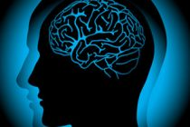 Ćelije mozga žive do 48 sati van tela