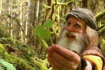 Od modernog života do života u prašumi