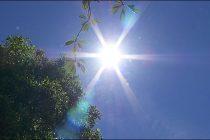 Kako preživeti letnje vreline?