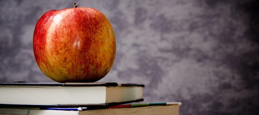 Čime smo zaslužili priručnike o seksualnom obrazovanju dece?