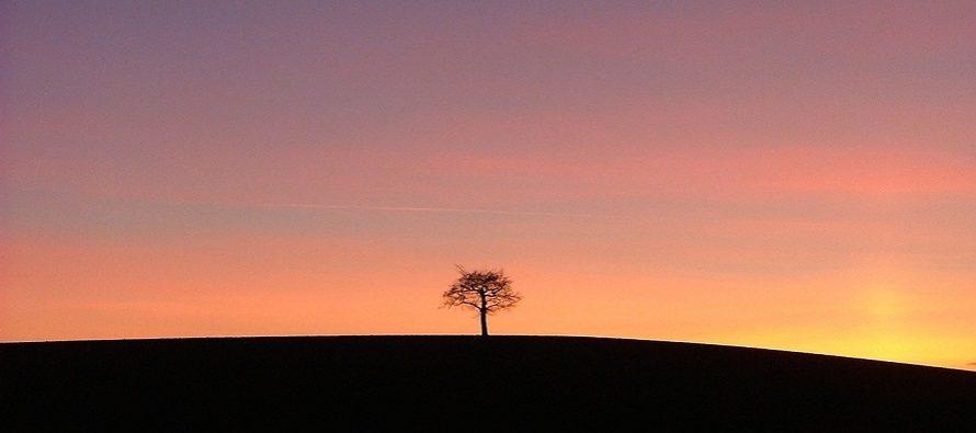 Pobedite osećaj usamljenost u četiri koraka!