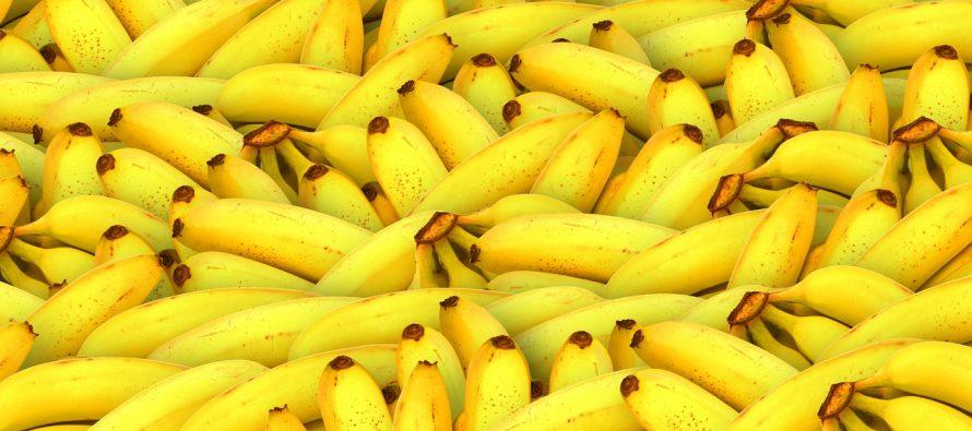 Kako izabrati najbolje banane?