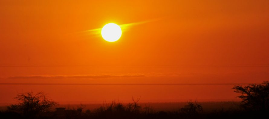 Posledice globalnog zagrevanja: Septembar najtopliji mesec u modernoj istoriji!
