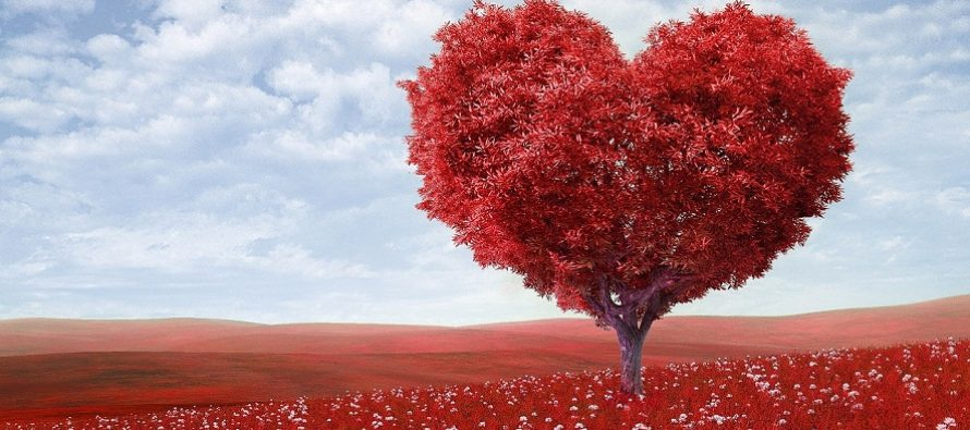 Oktobar - mesec romansi, velikih ljubavi i strasti! | Edukacija